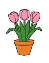 How to Draw a Pot of Tulips